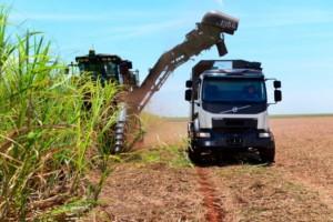 Autonomní nákladní vozidlo Volvo je připraveno zvýšit úrodu cukrové třtiny v Brazílii / Foto zdroj: © Volvo Truck Corporation