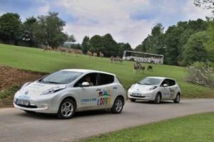 ZOO Dvůr Králové a Nissan představily nový projekt E-safari na podporu provozu elektromobilů / Foto zdroj: NISSAN