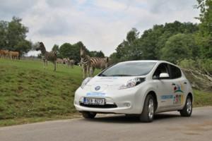 S Nissanem do Afriky o víkendu 26. - 27. srpna v ZOO Dvůr Králové / Foto zdroj: NISSAN